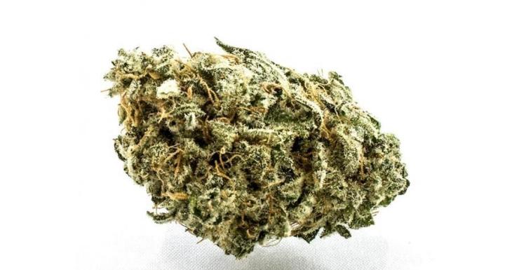 bluecheese1-900x600