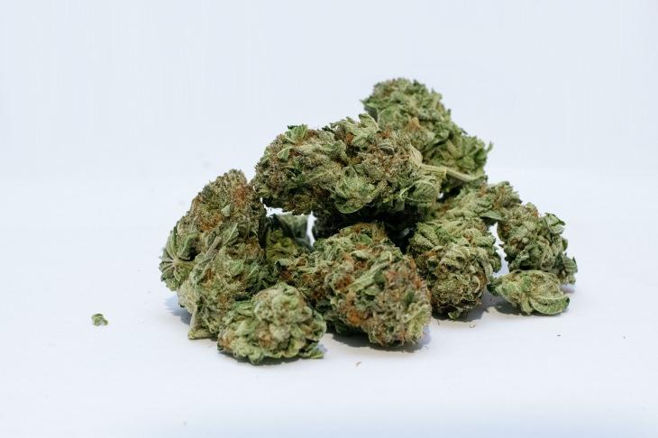 marijuana-2174302_1920